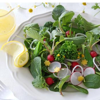 春のサラダレシピコンテスト|レシピブログ