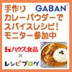 レシピブログのGABAN手作りカレーパウダーでスパイスレシピ!モニター参加中