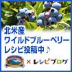 北米産ワイルドブルーベリーの料理レシピ