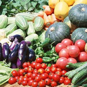 スパイスでお料理上手:夏を乗り切ろう!スパイスで野菜たっぷりレシピ