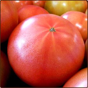 いわき市のトマトのうま味を活かしたヘルシー&ビューティーレシピ大募集♪