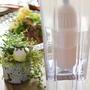 アルカリ水の効果について&【牛しゃぶサラダ】レシピ