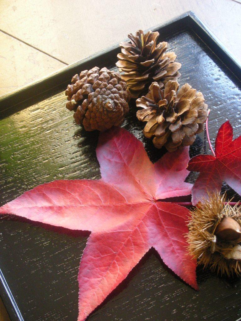 autumnleaf2.jpg