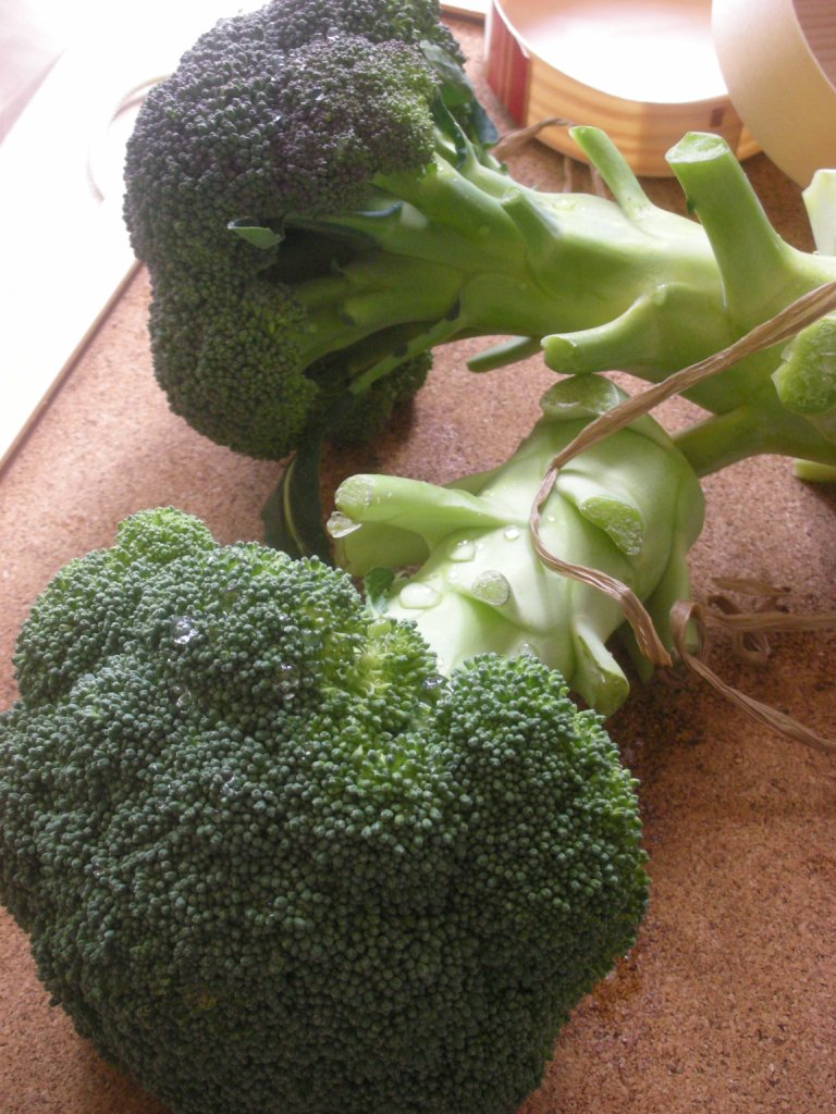 brocco1.jpg