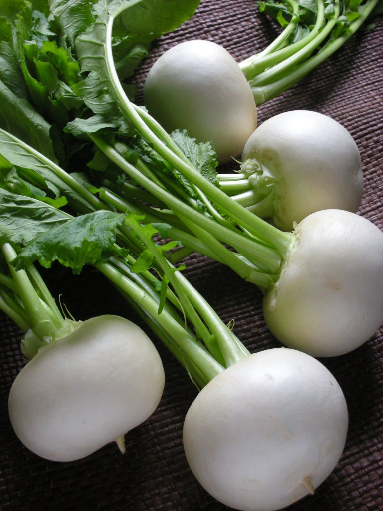 turnip1.jpg